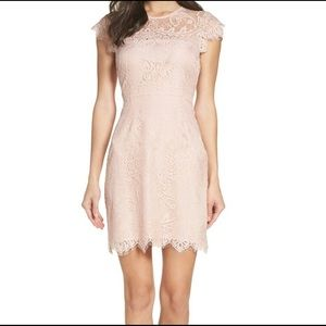 BB Dakota Dresses - NWT BB Dakota Jayce Lace Sheath Cocktail Dress